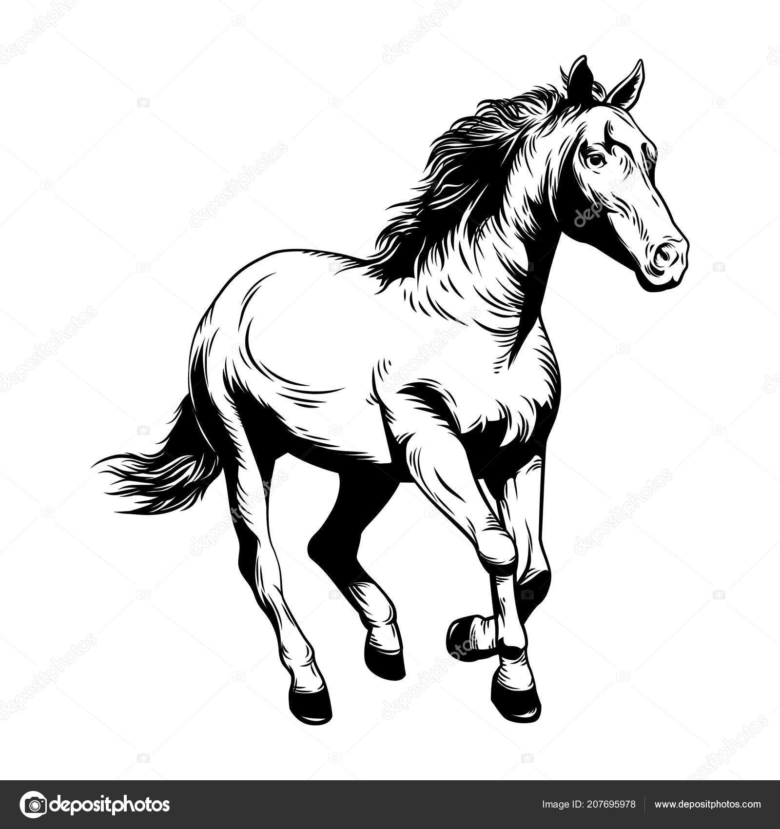 Horse Vector Illustration Horse Racing Drawing Stock Vector C Artandrew 207695978