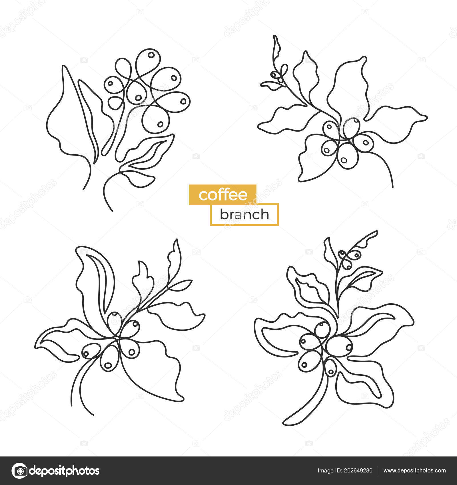 Set Coffee Tree Branches Black Art Sketch Leaf Natural Bean Stock