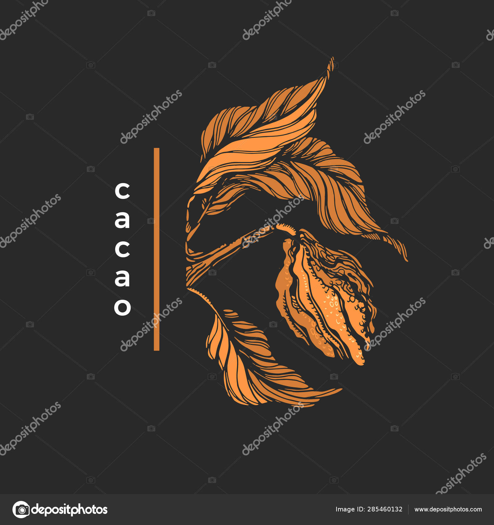 Vector Of Cocoa Tree Tropical Symbol Vector Image By Batikart Vector Stock 285460132