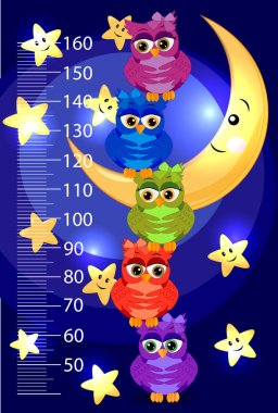 Kids height meter with cute owls. Funny stadiometer from 50 to 160 centimeter. clip art vector