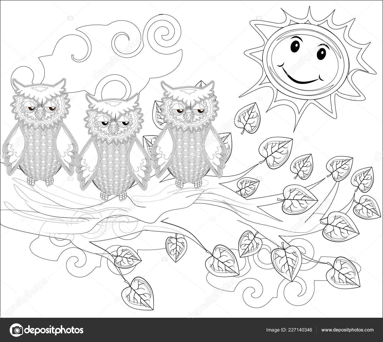 Malvorlagen Vögel Süße Eule Sitzt Auf Dem Baum Stockvektor