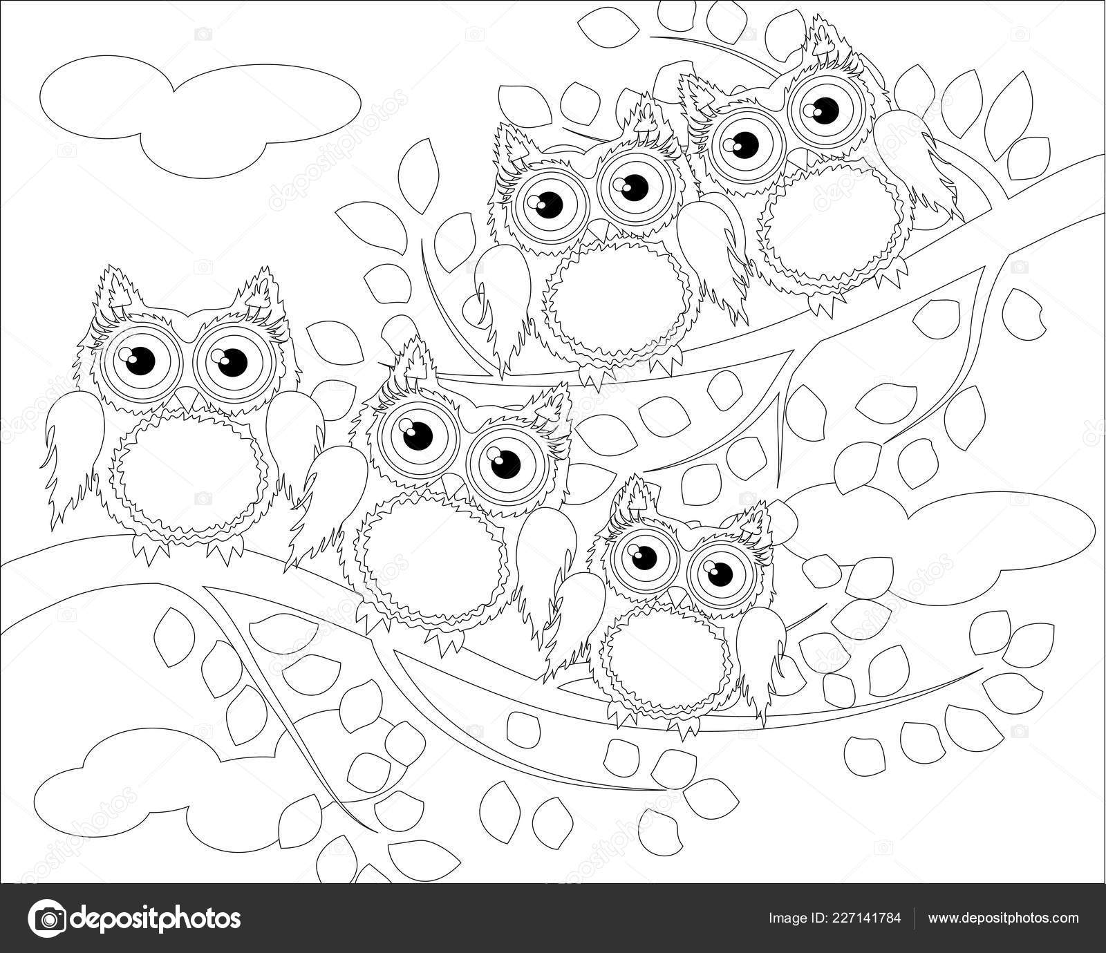 Coloring Book Adult Older Children Coloring Page Cute Owl ...