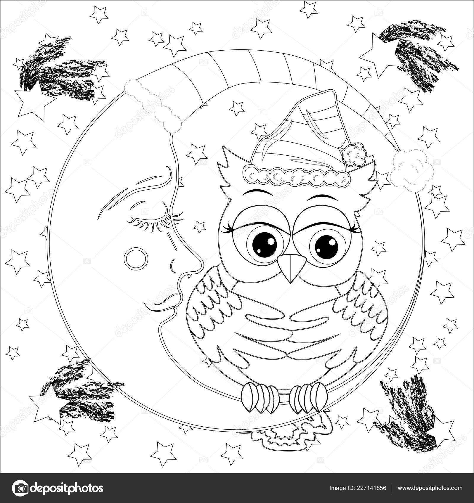 Búho Lindo Media Luna Con Las Estrellas Adultos Estrés Para