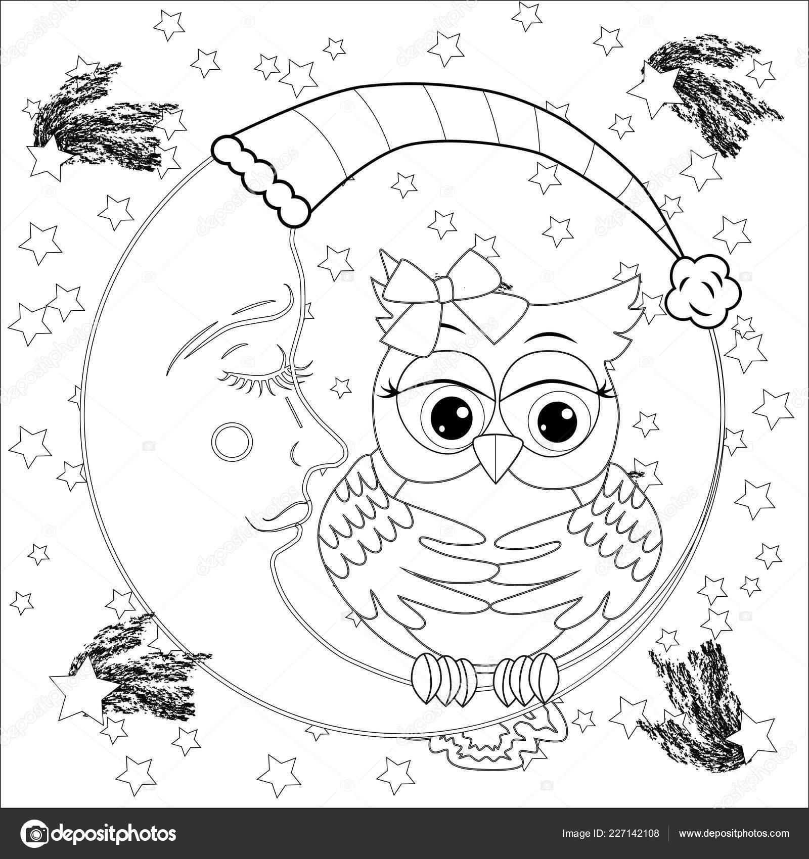 Coloriage Anti Stress Hibou.Hibou Mignon Sur Demi Lune Avec Etoiles Adulte Stress