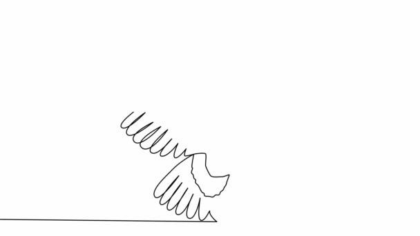 Önrajz egyszerű animáció egy folyamatos rajz egy vonal bagoly kitárt szárnyakkal, repülő
