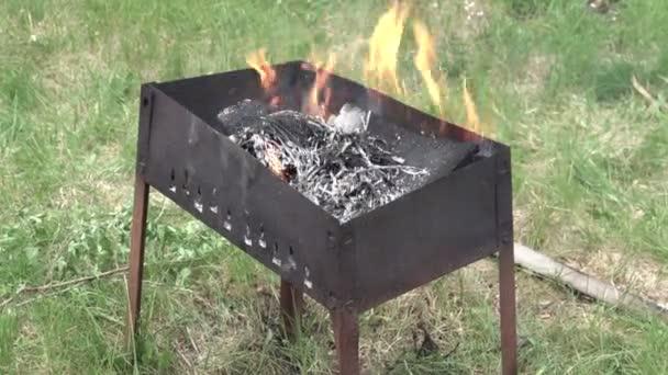 Oheň hoří v grilu. Železné krabici. Zelená tráva. Spálený uhlí. Rudý plamen. Kebab mimo město. Vaření. Ostatní turisty. Letní den. 4k video