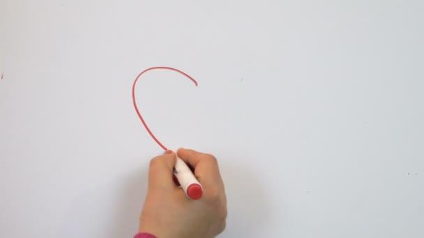 Červená značka grafika vyznání lásky. Bílé pozadí. Den svatého Valentýna. Romantický pocit. 14 únor ženských rukou. 4k video