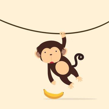 monkey climbing on the vine