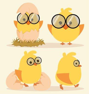Cartoon Cute Chick Set