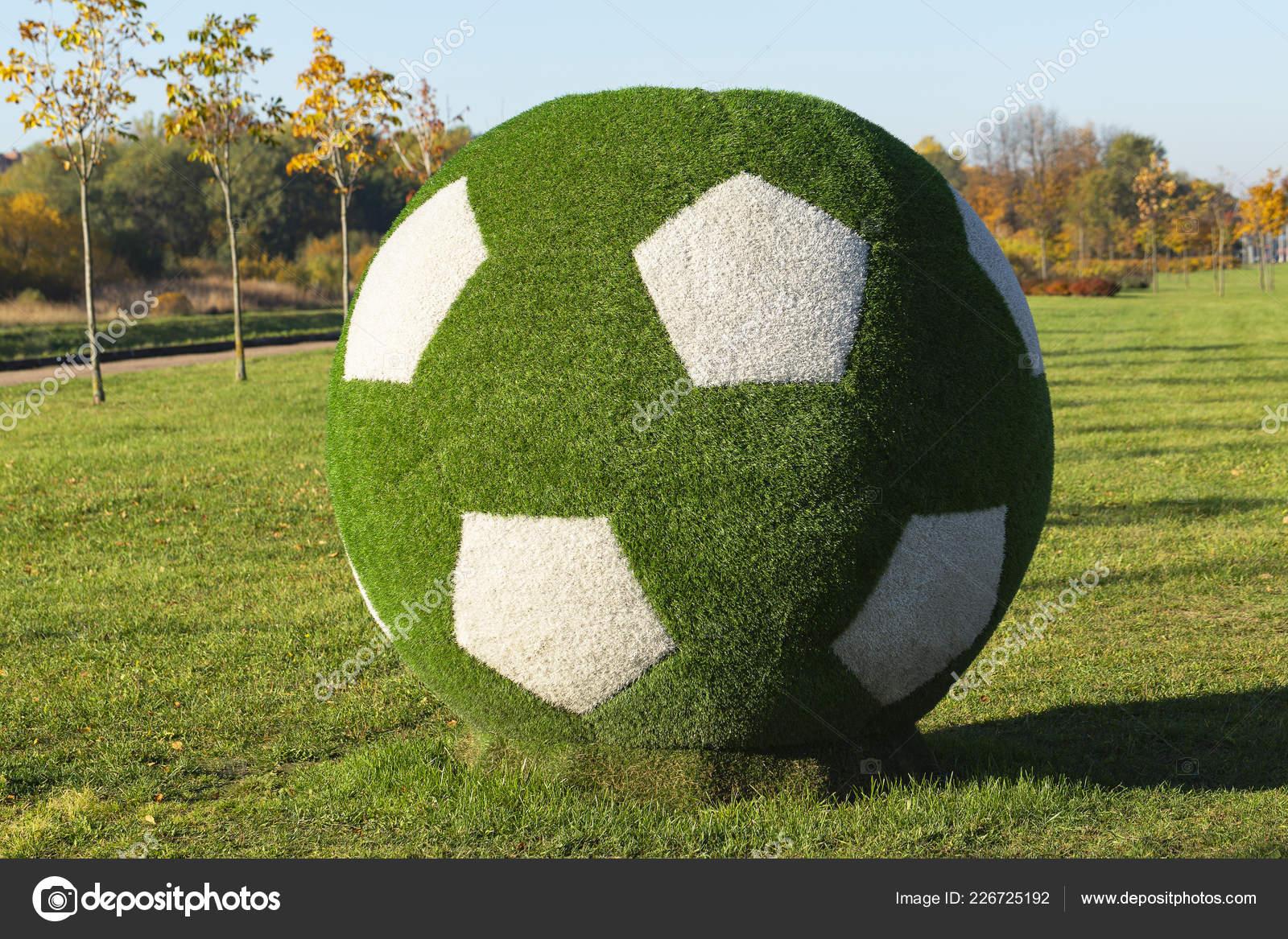 San Petersburgo Rusia Octubre 2018 Pelota Fútbol Verde