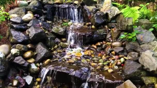 Japonská zahrada s vodopádem a rybníkem
