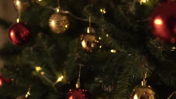 A lány díszíti a karácsonyfát.