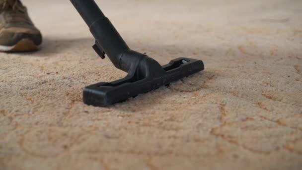 Staubsauger reinigt den Teppich.