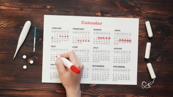 Menstruationskalender mit Baumwolle Tampons, Nahaufnahme