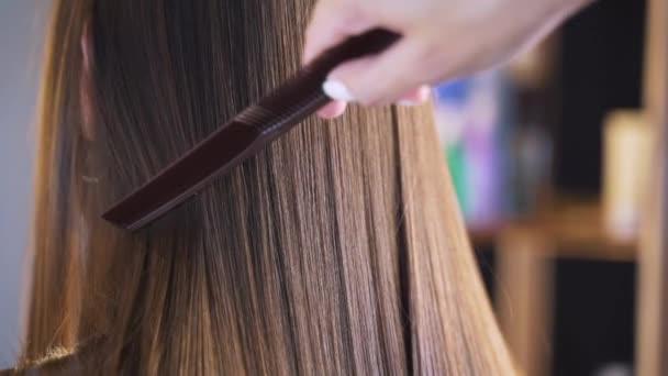 Dlouhé tmavé vlasy mladé dívky. Zářivé a hedvábné vlasy po narovnání keratinová. Účinek keratin, botoxu, rovných vlasů. Koncept krásy salonů, krásy.