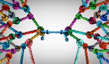 Connecting teams and connected group concept as many different ropes tied and linked together as an unbreakable chain as business trust metaphor linking partners for teamwork support and strength.