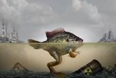 Mutazione genetica linquinamento ambientale e danni ereditari del Dna causata da un ambiente inquinato con rifiuti industriali in aria ed acqua come un pesce ibrido e rana con elementi 3d illustrazione.