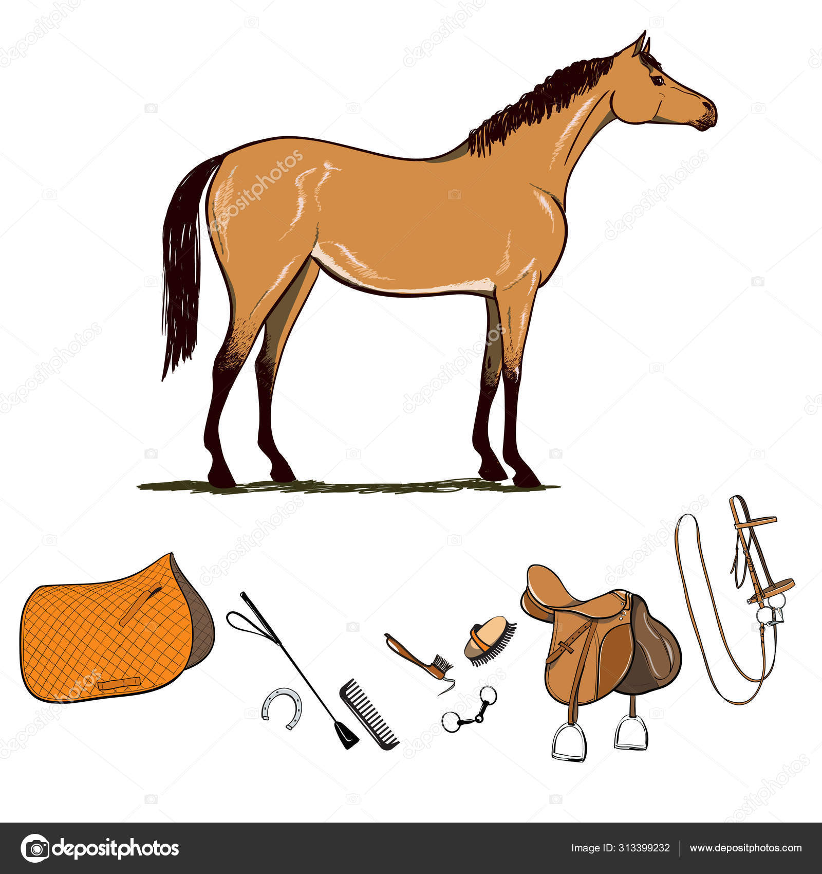 Horse Riding Gear Tools Set Bridle Saddle Stirrup Brush Bit Stock Vector C Larisa Zorina 313399232