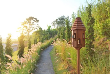 Wooden bird houses near walkway in dried grass field at sunset.