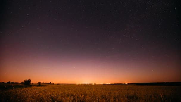 Natural Night Starry Sky Above Summer Field Meadow. Glowing Stars And Sunset Sunrise Lights Above Landscape.