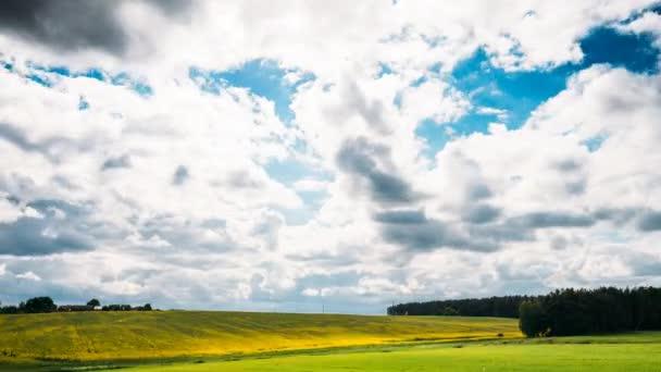 Zemědělská krajina s řepka, řepky olejné pole louce v jarní sezóně. Řepka žluté květy