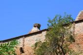 Megerősített középkori Szász evangélikus templom a faluban Alma VII (Almen) Erdély, Románia. A települést a Szász telepesek alapították a 12-edik század közepére.