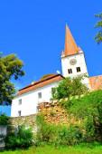 Erődített középkori szász templom a falu Cincu, Grossschenk, Erdély, Románia. A települést a szász telepesek alapították a 12. század közepén..