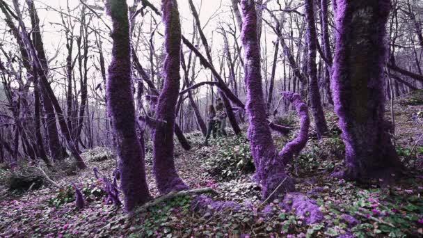 Lila mesebeli erdő. Két fiatal sétál a varázslatos lila erdőben a napsütéses napon