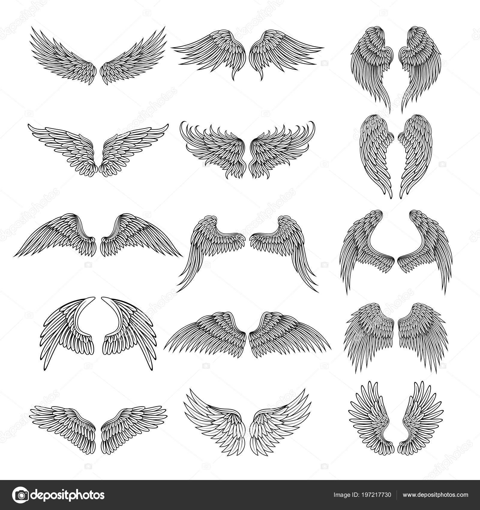 Tattoo Design Immagini Di Diverse Ali Stilizzate Immagini