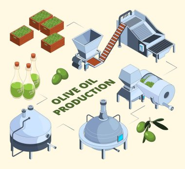 Olive manufacturing. Oil production processes plant food press industry farm tank centrifuge bottles. Vector isometric pictures