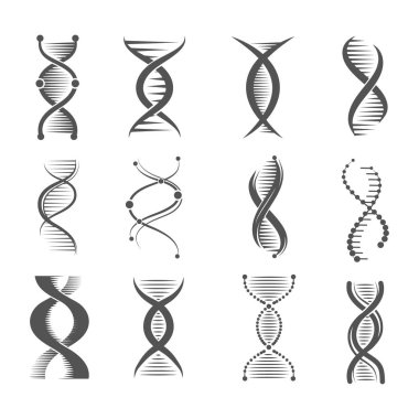 Dna spiral icons. Helix human technology research molecule and chromosome medical and pharmaceutical vector symbols