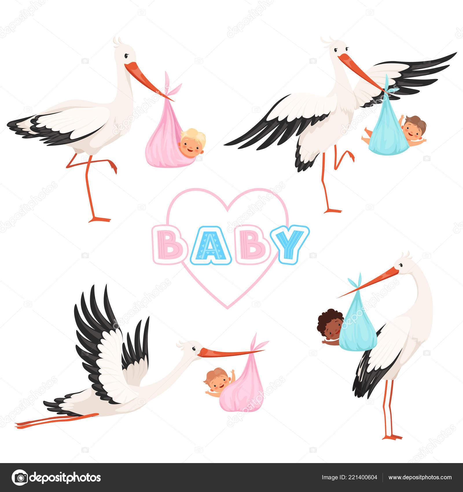Cigogne Avec Bébé Joli Oiseau Qui Vole Avec Sucette Nouveau