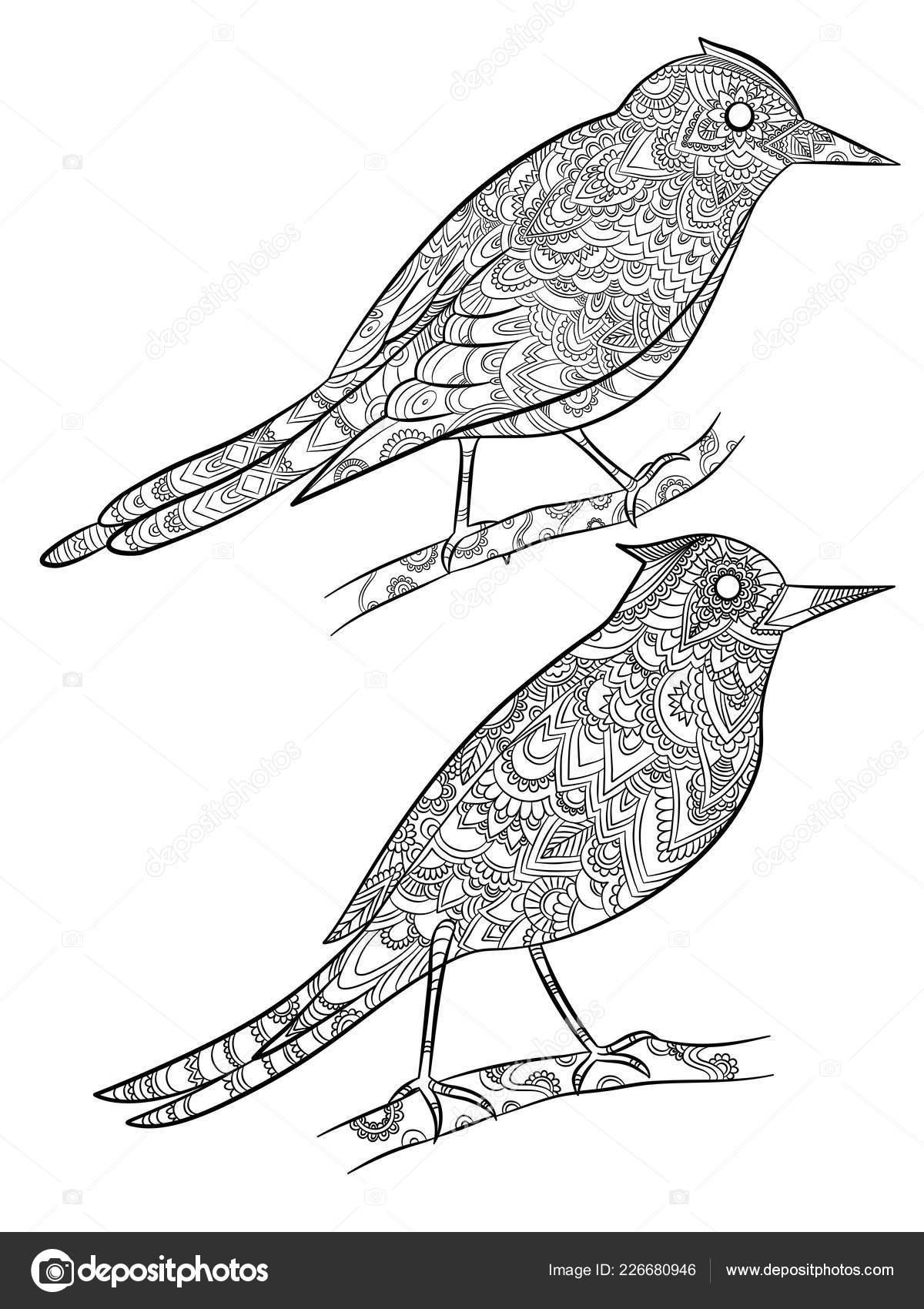 Kuşlar Boyama Sayfaları Doğrusal çiçek Desenli Vahşi Kanarya