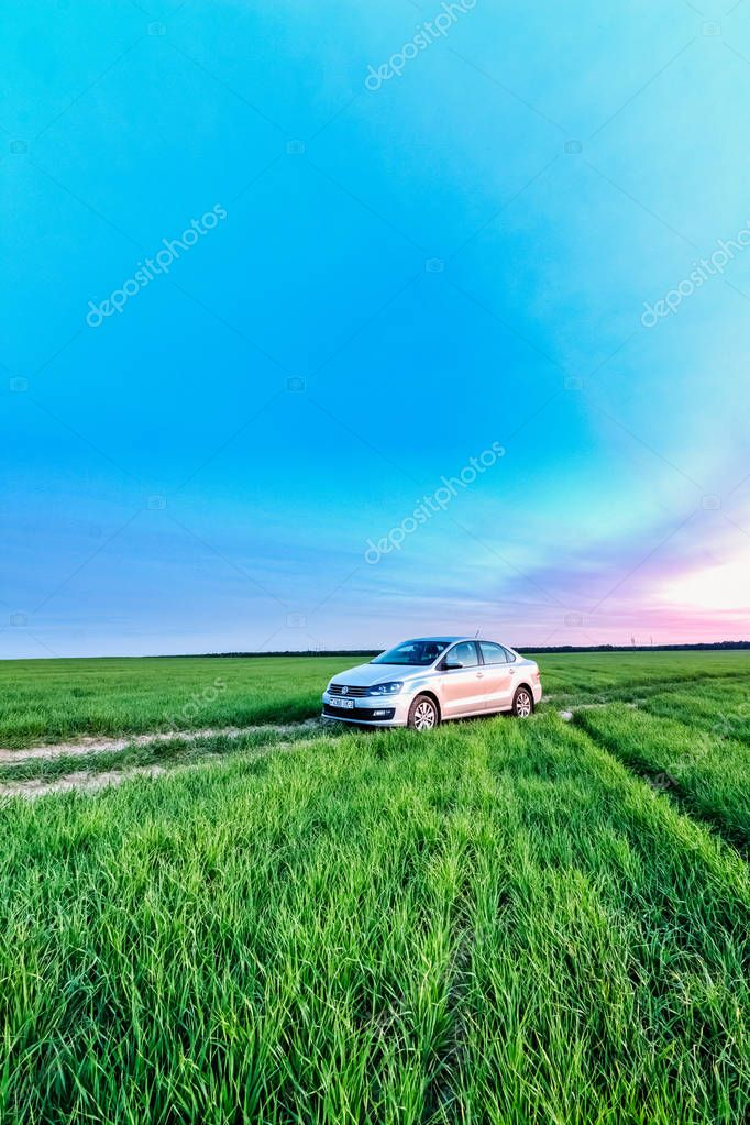 Volkswagen Polo Vento on a rural road in a wheat field in the ev