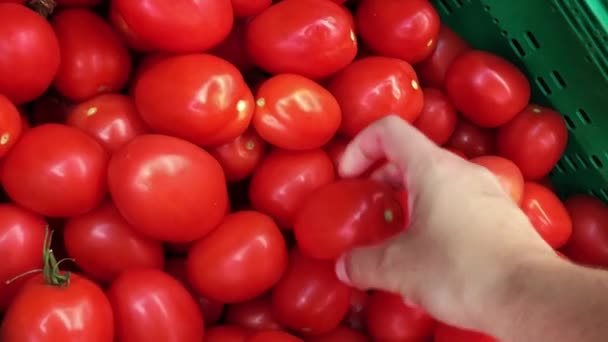 Hand of a man picking fresh tomatoes in the supermarket.