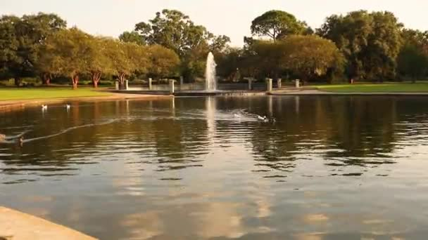 Fragment of lake, in national Park. Beautiful landscape with water fountain and ducks in pond