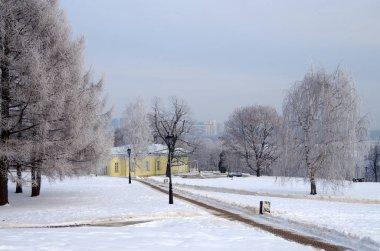 Park  in Kolomenskoye in winter day