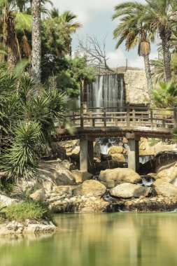 vertical view of cascade and lake of el palmeral park in the city of alicante, spain