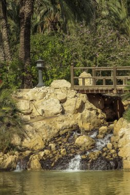 vertical view of a little cascade and wooden bridge in El palmeral park on a sunny day in the city of alicante, spain