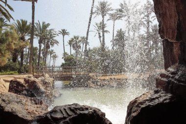 horizontal view of El palmeral park in the city of alicante, spain from behind of a waterfall