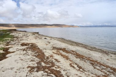China, Tibet, the sacred lake for Buddhists Manasarovar in june in cloudy weather