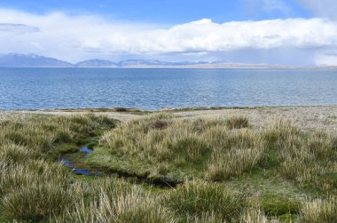 China, Tibet, holy lake Manasarovar