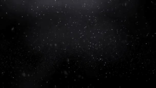 Realistic beautiful snowflakes falling and spinning in black space. Looped video.