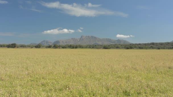 Krajina s hory v dálce
