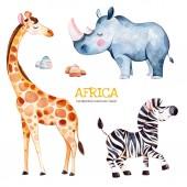 Fotografia Collezione di Safari con rinoceronte e zebra, giraffa, illustrazione dellacquerello