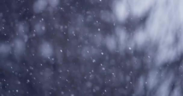 Zimní scéna s pozadím padající sníh 4k