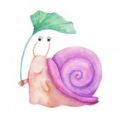 Fotografie Aquarell handgezeichnete Abbildung. Niedlichen Charakter lächelnd bunte Schnecke isoliert auf weißem Hintergrund malen. Für Kindermode, lustigen Cartoon-Stil. Für Karten, Einladungen, Party, Banner, Kindergarten, Baby-Dusche