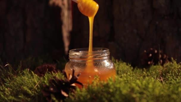 Kapátkem medu ve skleněné nádobce s tekuté čerstvý přírodní med, pohled shora, makro