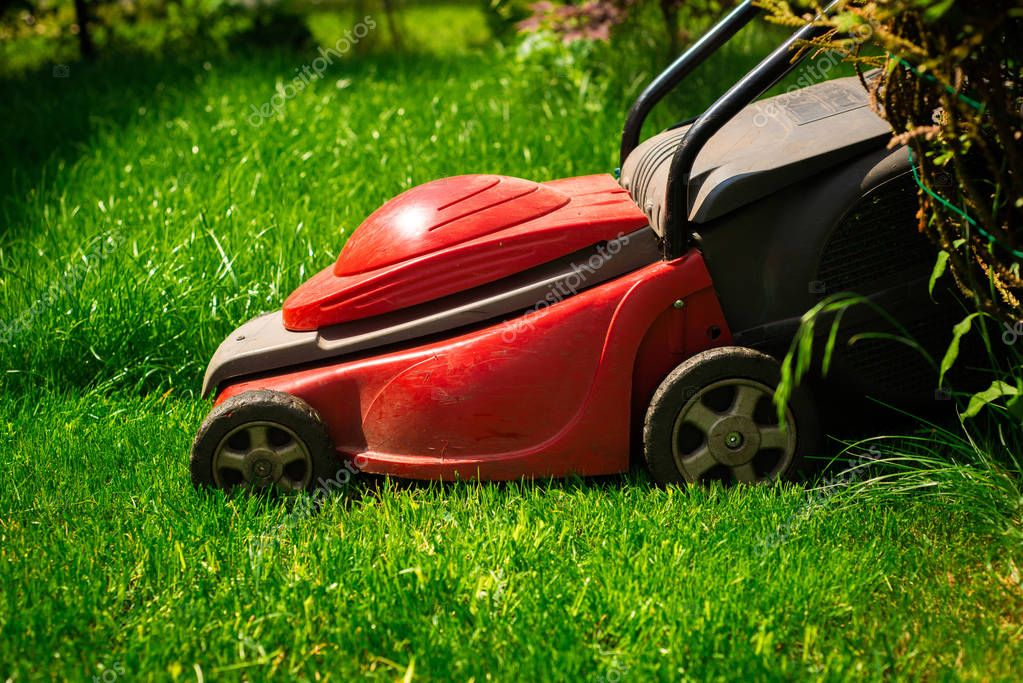 Mowing the grass. The gardener mows the grass with a red electric mower. Work in the garden, spring cleaning. Care for the garden and grass.