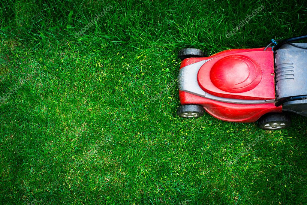 Top view on mowing the grass. The gardener mows the grass with a red electric mower. Work in the garden, spring cleaning. Care for the garden and grass.